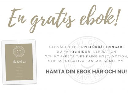thebook2